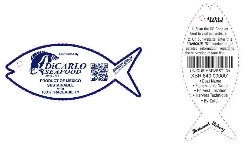 Where does your fish come from? | DiCarlo Seafood